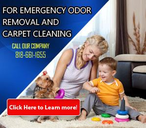 Carpet Cleaning Sherman Oaks, CA | 818-661-1655 | Best Service